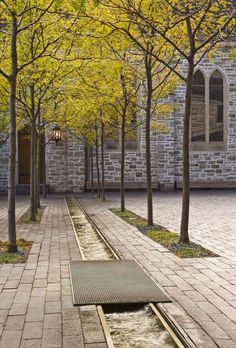 Chilling at the rill on the schusterstra e freiburg for Courtyard landscaping ottawa