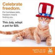 Select pets available through the month of July for just $25!