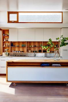 Ten inspiring contemporary colourful kitchens that buck the all-white kitchen trend and embrace eclectic hues, shades of pink, timber cabinetry and more.