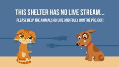 """Help shelter """"Sirius"""" in Ukraine with fundraising to save pets from death and join Animals Life NET - crowdfunding site for stray animals in shelters."""