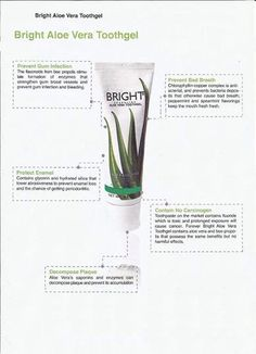 Contact me for more details or visit my website https://shop.foreverliving.com/retail/entry/Shop.do?store=GBR&language=en&distribID=440500091377 #aloevera #aloe #forever #living #health #toothgel