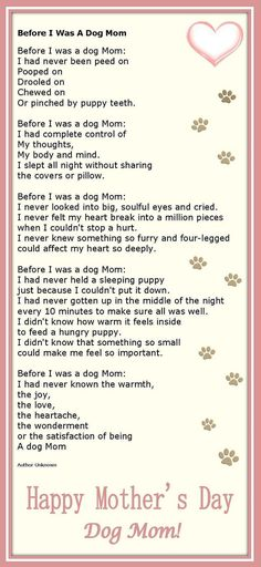 for dog moms on mothers day- so true about my Dobermans.