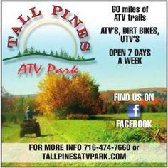 41 Best Windrock Atv Park Images Atv Atvs Dirtbikes