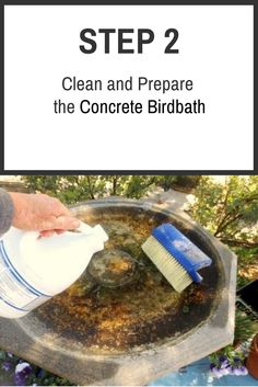 1000 images about how to paint a concrete bird bath on for How to get concrete clean