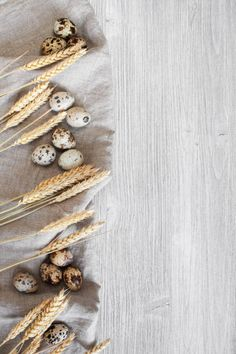 wooden kitchen background with quail eggs and wheat
