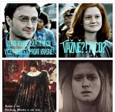 from the story Harry Potter JOKES by EmMarauder (ᴸᴬᴰᵞ ˢᴬᴿᶜᴬˢᴹ) with reads. Harry Potter Jokes, Drarry, Reaction Pictures, Funny Texts, Hogwarts, Lol, Humor, Reading, Memes