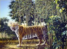"This is not an easy optical illusion.  It was created by American wildlife artist Rusty Rust, and it shows a huge Bengal Tiger standing in a bamboo forest. Your mission now is to look for ""The Hidden Tiger"" in the image above.  Where is the hidden tiger?  Once you see it, it seems so obvious. Read his stripes."