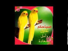 صباح الخير وسرور - YouTube