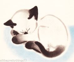 NEWBERRY Sleeping SIAMESE Kitten Cat Art Vintage 1937 MATTED Kitty Picture