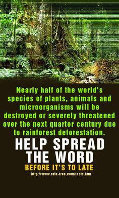 "Earth:  #Earth ~ ""Nearly half of the world's species of plants, animals, and microorganisms will be destroyed or severely threatened over the next quarter century, due to rainforest deforestation. Help spread the word before it's too late!"""