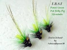 Image result for mikael frodin flies