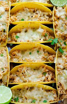Honey-Lime_Chicken_Tacos5