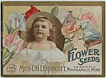 click image for pages of vintage flower seed catalogue covers