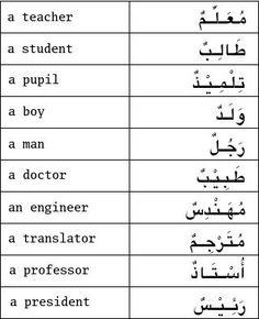 Arabic Vocabulary Words for Anatomy - Learn Arabic   Arabic ...