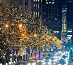 Magnificent Mile, Chicago, IL