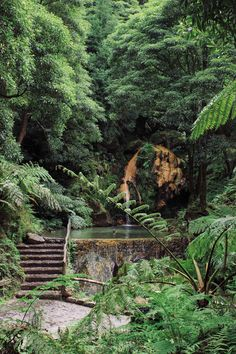 A short guide to São Miguel Island - the greenest paradise in the middle of the Atlantic Ocean Places In Europe, Places To Travel, Places To See, Portugal Travel, Atlantic Ocean, Heaven On Earth, Where To Go, Beautiful World, Island