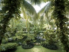 Landscaping at Shangri-La's Tanjung Aru Resort & Spa