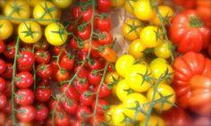 pomodori mix