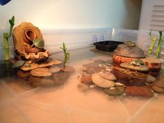 painted turtle tank - Google Search