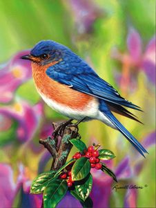 Cobane Studio: Hollyberry Bluebird  12 x 16 (inches) print size  wrapped canvas Giclee Print; bluebird; copyrighted artwork