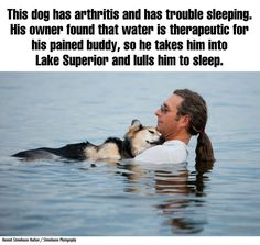 I always knew about this guy and his dog, but I didn't know about the aftermath of the pictures. :3 (Click through to read it all)