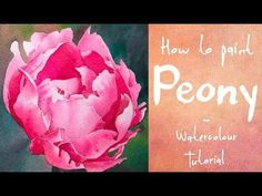 How to paint a Pink Peony - Watercolour tutorial - YouTube #watercolorarts