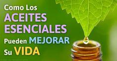 La forma concentrada de los compuestos volátiles biológicamente activos en los aceites esenciales pueden proporcionar beneficios terapéuticos en pequeñas cantidades. http://articulos.mercola.com/sitios/articulos/archivo/2015/08/17/mejore-su-vida-con-los-aceites-esenciales.aspx