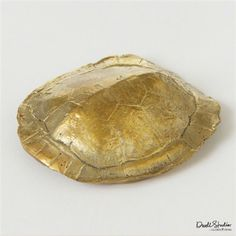 Global Views Brass Turtle Paperweight - perfect accent for your messy desk!!!