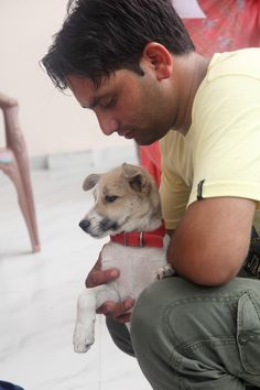 A special moment, Sanjay giving support and care to one of our rescue dogs. #dharamsaladogs #compassionforanimals #compassioninaction #cutepuppy