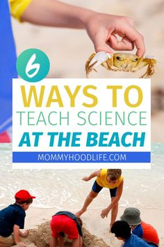 Teach your children science at the beach and have fun this summer.  These fun science based activities are educational, interesting, and a great way to keep the kids busy at the beach.  #ScienceAtTheBeach #BeachFun #DistanceLearning At Home Science Experiments, Science Activities For Kids, Teaching Science, Educational Activities, Learning Resources, Teaching Kids, Kid Science, Beach Activities, Children Activities