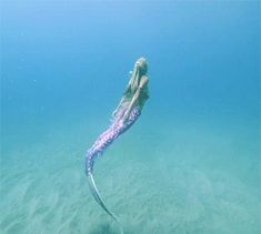 magical mermaid and water