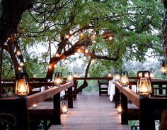Tree Camp | Londolozi | Londolozi Game Reserve