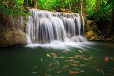 Best waterfall pic, 704 kB - Kim Grant