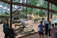 Saint Louis Zoo Purina Painted Dog Preserve by PGAV Destinations