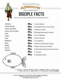 Printable Disciple Facts worksheet for Kids Bible Study For Kids, Bible Lessons For Kids, Kids Bible, Children's Bible, Kids Sunday School Lessons, Sunday School Activities, School Ideas, Bible Resources, Bible Activities