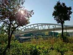 Il Ponte della Musica (the Bridge of Music) as seen from the bike track. See post on G+: https://plus.google.com/115852929541440345393/posts/MpxzE4pkieT