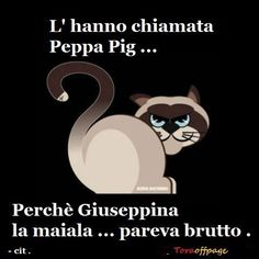 "ah ah ah – ""Persbaglio"" Smile Quotes, Funny Quotes, Funny Images, Funny Pictures, Italian Humor, I Hate My Life, Feelings Words, Just Smile, Grumpy Cat"