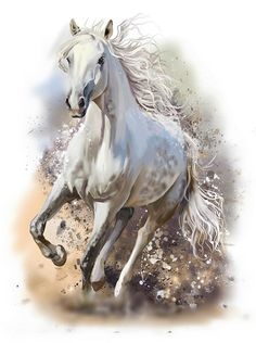 white andalusian horse cross stitch pattern #aff