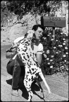 Rock Hudson with Dalmation