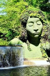 Atlanta Botanical Gardens HTC Butterfly Wallpaper