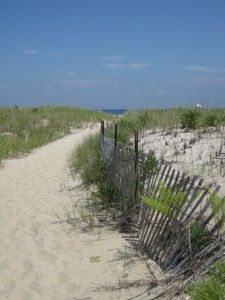 The Dunes at Sandy Hook, NJ (part of Gateway Nat'l Park)