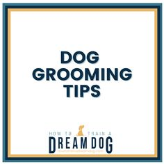Keep that cute neat and clean! Proper grooming keeps your puppy looking and smelling great, as well as keeping their skin, teeth, coat, and nails in healthy condition. There are so many ways to keep your dog properly groomed. Dog Grooming Tips, Dog Barking, Your Dog, Teeth, Conditioner, Train, Puppies, Nails, Healthy