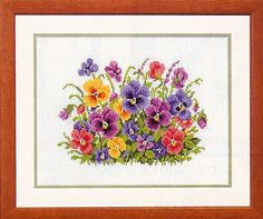 Gekleurde viooltjes