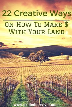 The Best 22 Ways I Know Of On How To Make Money With Land. Pick and Choose The Ones That WIll Work Best For Your Land and Situation.