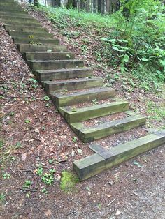 Steps in national park picnic area.