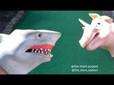 SHARK PUPPET PLAYS MINIGOLF - YouTube Shark Puppet, Hand Puppets, Super Mario, Inktober, Plays, News, Random, Videos, Funny