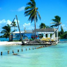 7. Lazy Lizard Bar, Caye Caulker, Belize | 28 Insane Bars That Need To Be On Your Boozy Bucket List