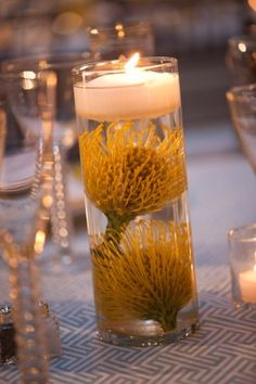 submerged pin cushion protea centerpiece (but in orange, of course) Submerged Centerpiece, Protea Centerpiece, Submerged Flowers, Sunflower Centerpieces, Fall Wedding Centerpieces, Wedding Table Flowers, Deco Table, A Table, Tropical Wedding Reception