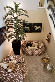 Natural Fabric, Small Rugs On Top Of Large Floor Carpets, Comfortable And  Warm Room Decorating Ideas For Pets