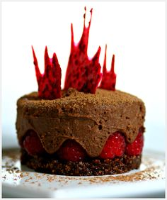 Chocolate raspberry cake with ginger chocolate mousse